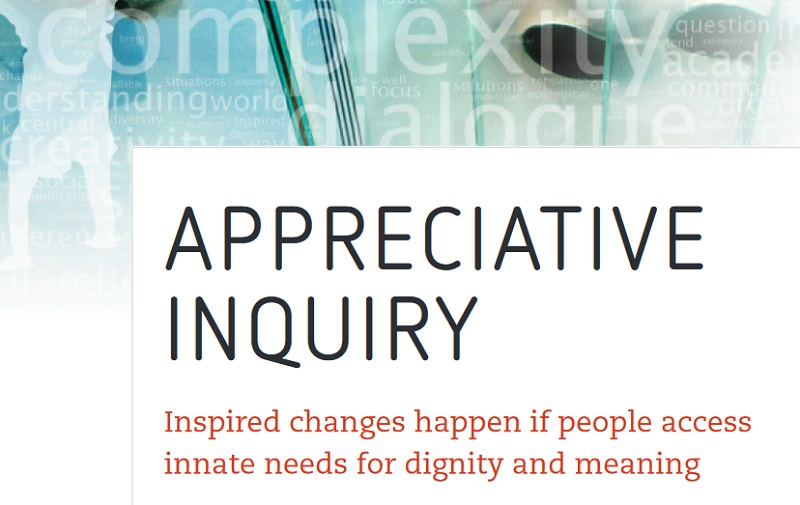 Appreciative Inquiry Perspectivity